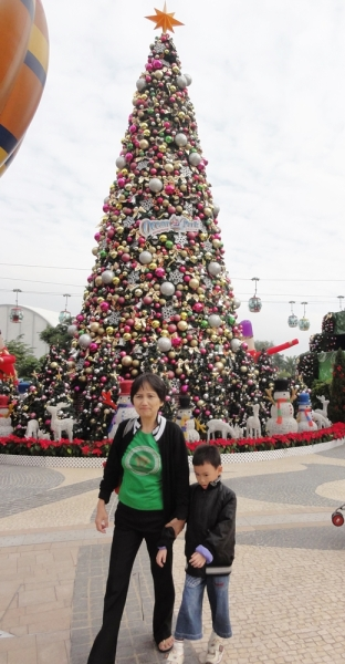 Giant Christmas Tree...........loved it!
