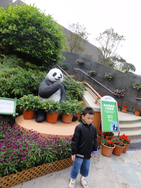 First, let's take picture with this panda statue