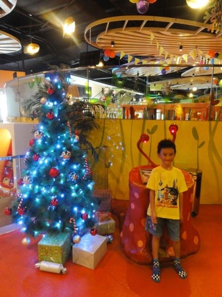 Christmas tree in Explorer Kid