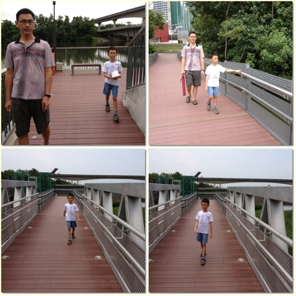 Sengkang Floating Wetland