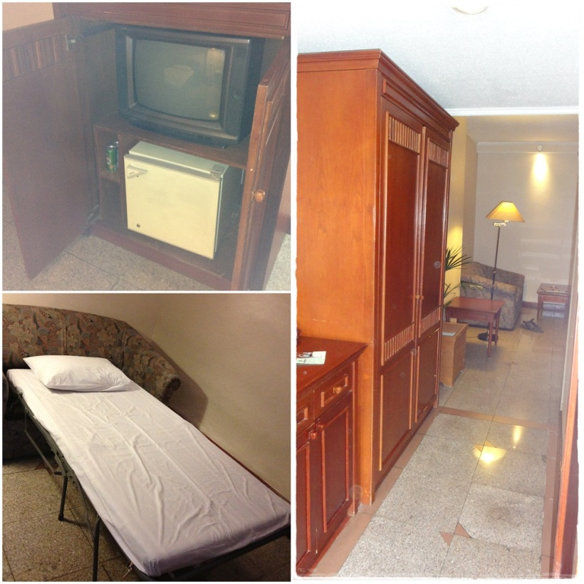 The living room is equipped with small TV, a mini fridge, a sofa bed, and one working table with a chair