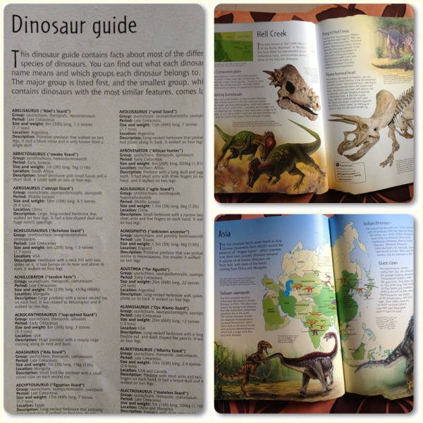 Inside the books, everything is about dinosaurs. He still wants to be a paleontologist when he grows up......