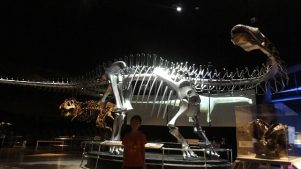 Apatosaurus & TRex