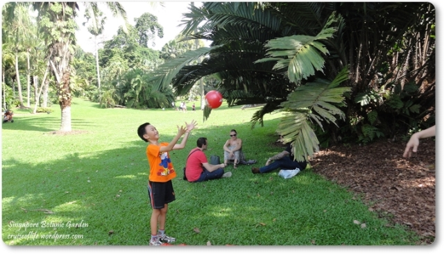 A Picnic In Singapore Botanic Garden Everyday Is A Miracle