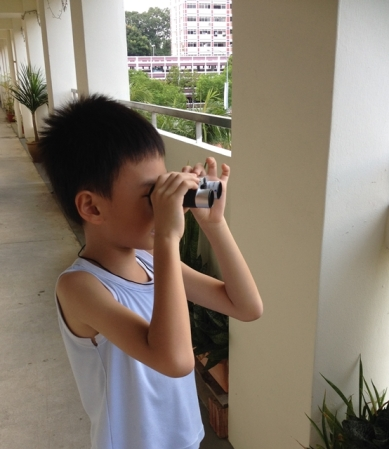 Tried the binoculars at home