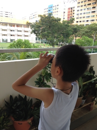 Looking for birds and aeroplanes