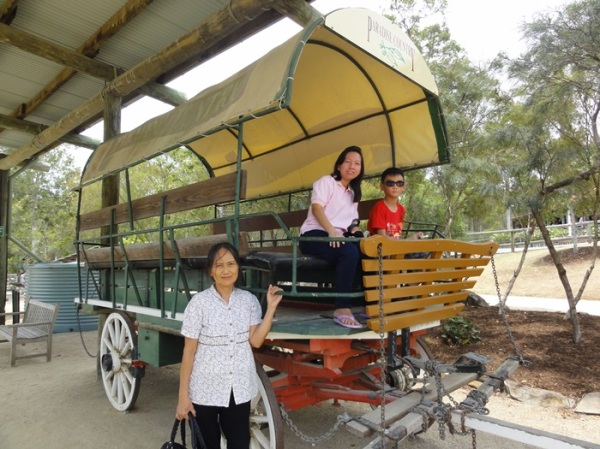 Took picture with the horse cart