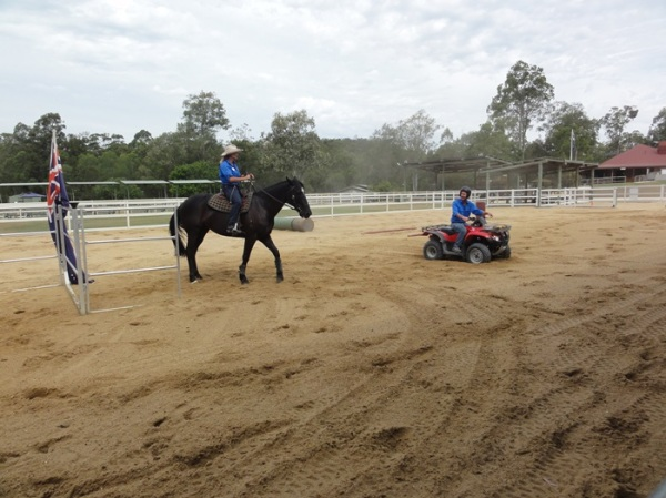 Then we went to the stock horse arena to see the horsewoman performed riding demonstration against a motor cycle. Who won? The horse of course...........