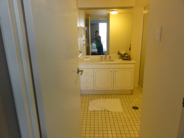 The bathroom in the master bedroom