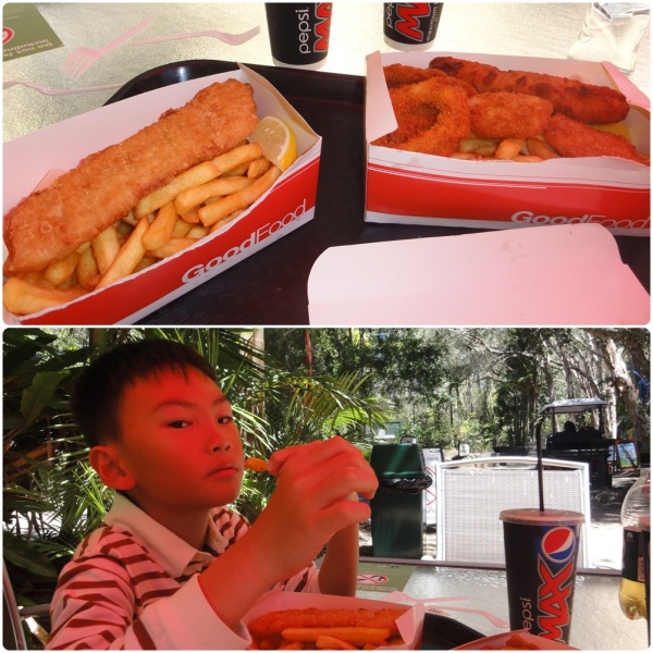 There was something strange about Australia, I kept eating fish and chips everyday but didn't get cough at all