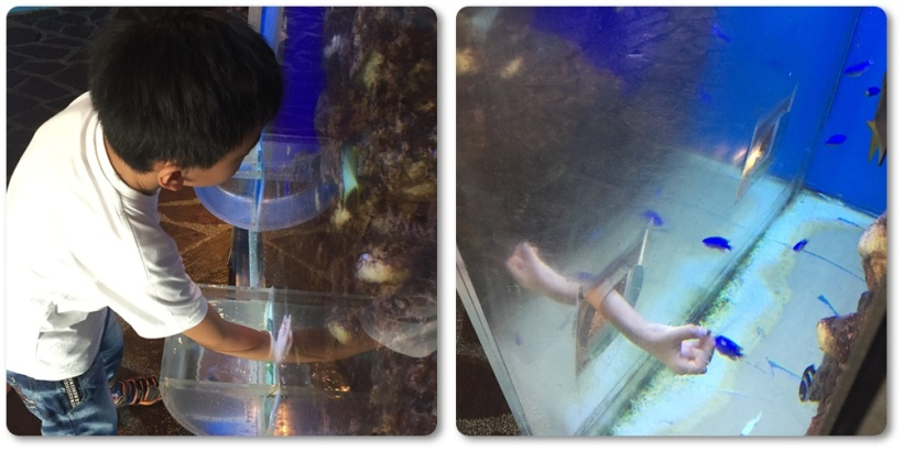 He could even put his hand inside the tank