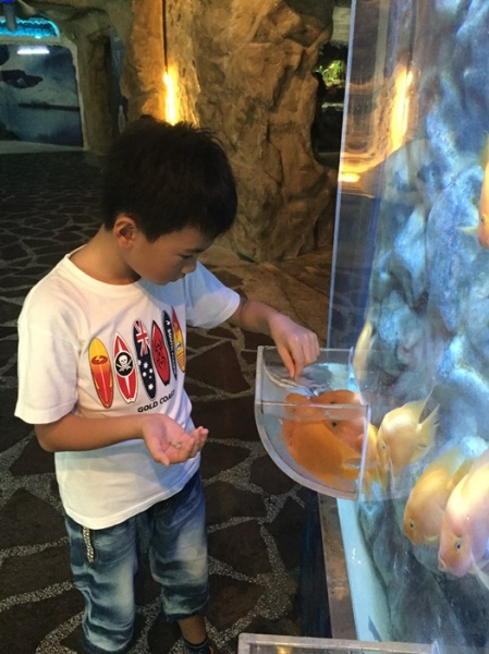 His favorite thing to do: feed the fish