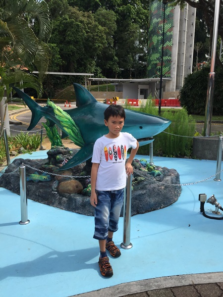 He took picture with the friendly shark before we went back