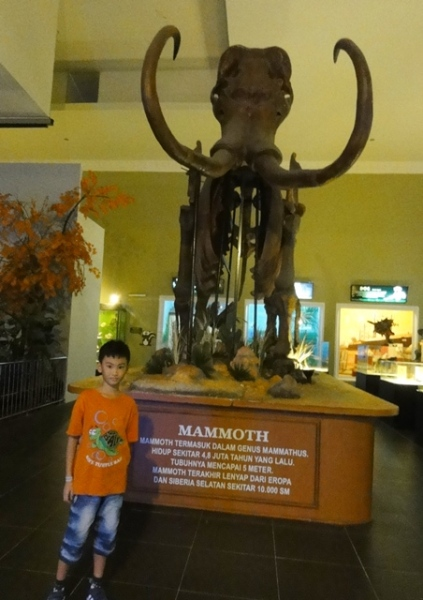 This mammoth porbably came from the ice age