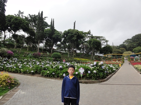 After finished playing in the water park, we went around to see the flowers. The boy was agreed to take pictures with the flowers for one time only (he was still upset because everything was closed)