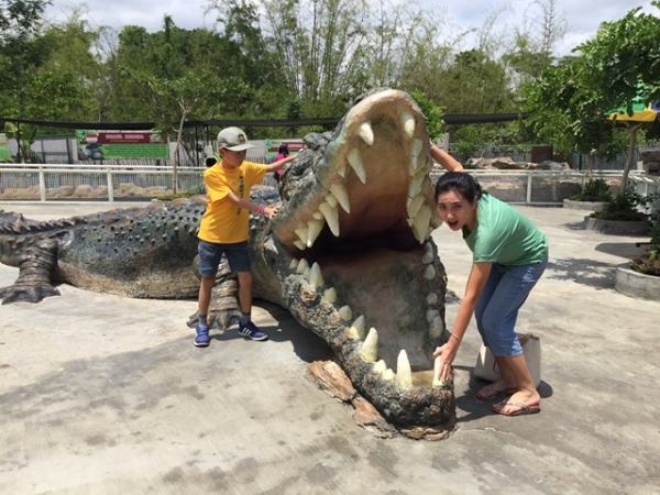 The not scary giant alligator